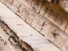 Holz aussuchen